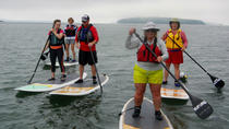 Stand Up Paddleboard Tour in Casco Bay, Portland, Stand Up Paddleboarding