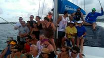 Tropical Day Sail in the British Virgin Islands, British Virgin Islands, Sailing Trips