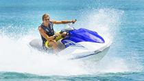 Orange Beach Waverunner Dolphin Tour, Gulf Shores, Waterskiing & Jetskiing