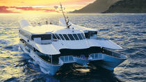 Valentine's Day Oahu Sunset Dinner Cruise - Buffet, Oahu, Valentine's Day