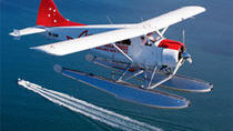 Sydney Northern Beaches Scenic Flight by Seaplane, Sydney, Air Tours