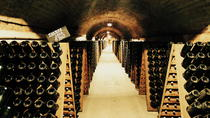 Small-Group Day Trip from Paris: Champagne Wines, Paris, Wine Tasting & Winery Tours