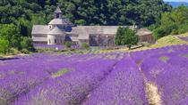 Small Group Provence and Lavender Museum Day Trip from Avignon, Avignon, Ports of Call Tours