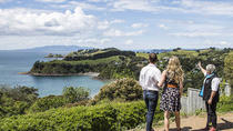 Artisans Waiheke Island Wine Tour from Auckland including Lunch, Auckland, Segway Tours