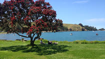 Explore Motutapu Island from Auckland, Auckland, Day Trips