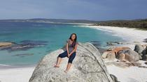 5-Day Tasmania Tour from Hobart Including Cradle Mountain, Tarkine Rainforest, Bay of Fires and ...