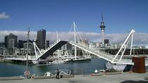 Auckland Shore Excursion: Small-Group Auckland City Tour, Auckland, Bus & Minivan Tours