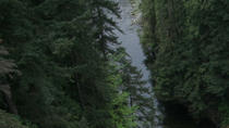 Capilano Suspension Bridge Admission, Vancouver, Family Friendly Tours & Activities