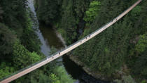 Capilano Suspension Bridge Including the Treetops Adventure and Cliffwalk, Vancouver, Family ...