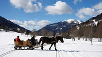 Christmas Horse-Drawn Sleigh Ride from Salzburg, Salzburg, Cultural Tours
