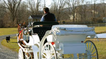 Private Tour: Lake Tahoe Carriage Ride, Lake Tahoe