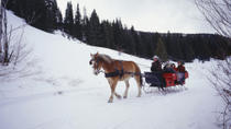 Sunset Sleigh Ride and Dinner, Lake Tahoe