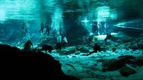 Cenotes 2-Tank Scuba Diving Adventure from Merida, Merida, null