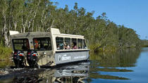 Noosa River and Everglades Afternoon Tea Cruise, Noosa & Sunshine Coast