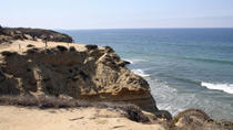 Hiking Tour of Torrey Pines State Reserve from San Diego, San Diego