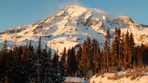 Mt Rainier Day Trip from Seattle, Seattle, Day Trips