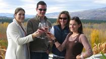 Central Otago Wine Tours from Queenstown, Queenstown, null