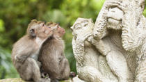 Bali Monkey Forest, Mengwi Temple and Tanah Lot Afternoon Tour, Bali, Historical & Heritage Tours