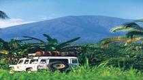 Small-Group Tour: Bali Rainforest by 4WD, Bali, Dining Experiences
