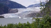 Whale Watching, Brewery Tour and Mendenhall Glacier, Juneau, Dolphin & Whale Watching