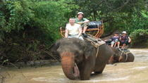 Elephant Trekking in Pattaya, Pattaya, Private Sightseeing Tours