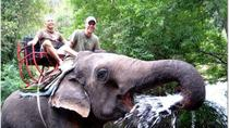 Khao Yai National Park and Elephant Ride Day Trip from Bangkok, Bangkok, Nature & Wildlife