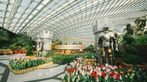 Admission Ticket to Gardens by the Bay in Singapore with Transport, Singapore, Attraction Tickets