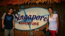 Sentosa Island Tour with Singapore Cable Car and Optional S.E.A Aquarium, Singapore, Day Trips