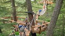 Treetop Canopy Walk in Whistler, Whistler, Bus Services