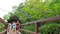 Penang National Park Half-Day Trek, Penang, Day Trips