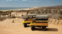 Baja Ranch Tour and Camel Safari from Los Cabos, Los Cabos