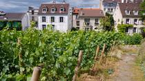 Montmartre Tour with VIP Clos Montmartre Vineyard Visit, Paris, Walking Tours