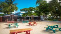 Barbados Mount Gay Rum Tour and Carlisle Bay Beach, Barbados