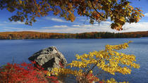 Overnight Fall Foliage Tour from New York City, New York City, Multi-day Tours