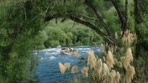 Rangitaiki River White Water Scenic Rafting from Rotorua, Rotorua, River Rafting & Tubing