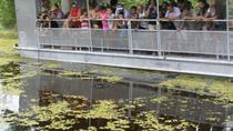 Swamp and Bayou Sightseeing Tour with Boat Ride from New Orleans, New Orleans