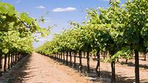 Par Wine Tour, San Antonio, Wine Tasting & Winery Tours
