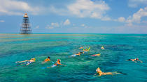 Key West Reef Snorkeling Cruise, Key West, Scuba & Snorkelling