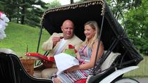 Central Park Carriage Ride and Marriage Proposal, New York City, Horse Carriage Rides