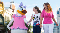 Disney's 10-Day Magic Your Way Ticket, ,