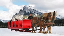 Horse-Drawn Sleigh Ride in Banff, Banff, Ski & Snow