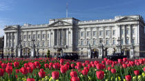The Royal London Tour including Buckingham Palace, London, Half-day Tours