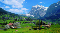 2-Day Jungfraujoch Top of Europe Tour from Zurich: Interlaken or Grindelwald, Zurich, Overnight ...