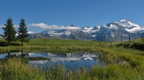 Lucerne Super Saver: Jungfraujoch Swiss Alps and Small-Group Bernese Oberland Day Trips, Lucerne, ...