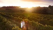 Leeuwin Estate: Food and Wine Experience, Margaret River, Wine Tasting & Winery Tours