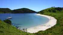 Tagestour durch die Bay of Islands ab Auckland, Auckland, Day Trips