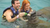 Cozumel Super Saver: Manatees Encounter and Sea Lion Discovery at Chankanaab Park, Cozumel, Nature ...