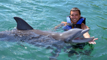 Programm Cancun Dolphin Encounter auf der Isla Mujeres, Cancun
