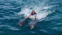 Punta Cana Dolphin Swim Adventure with Upgrade to Royal Dolphin Swim, Punta Cana