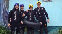 Black Water Rafting Waitomo Caves Tour, North Island, Adrenaline & Extreme